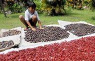 Gubernur AGK dan Lima Provinsi  Bahas Pala di Ternate